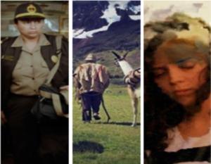 collage cine peruano