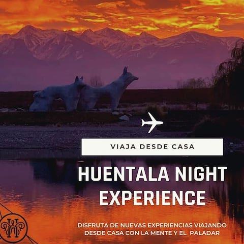 HUENTALA Night