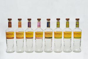 8-BarSol Bottles