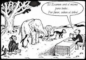examen_animales_zpsd8d00ec9