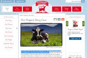 publicidad vacas