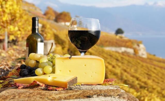 Vinos-de-la-region-de-Puglia-1