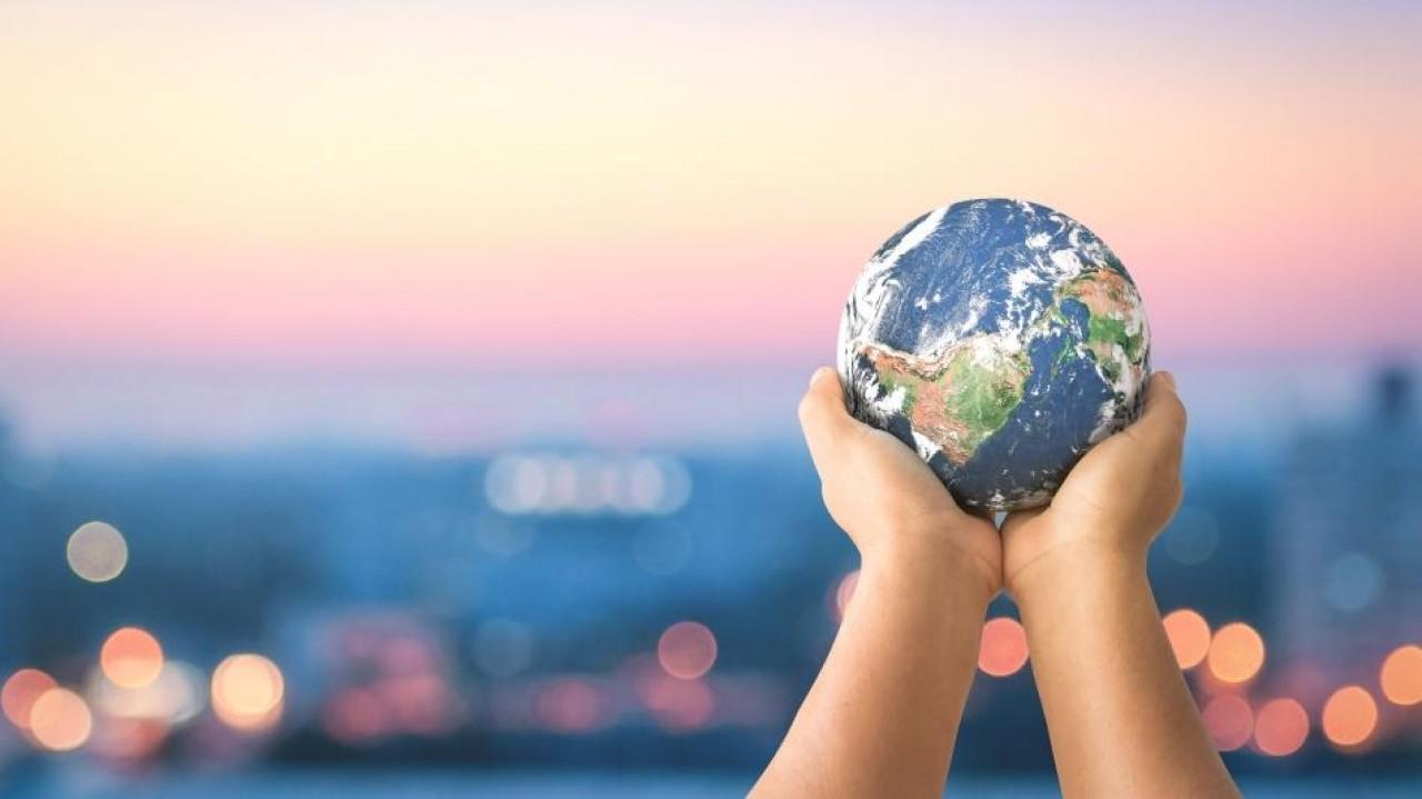 COVID-19: El planeta en pausa