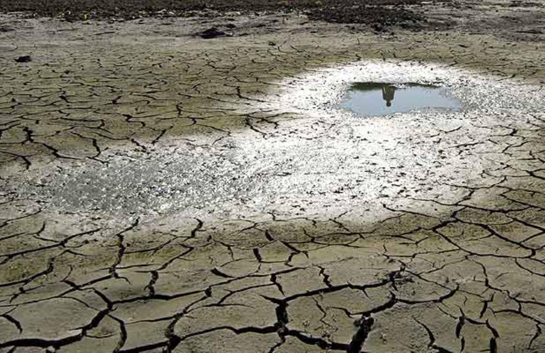 Avances en el combate del cambio climático