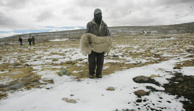Del frío de la burocracia a las heladas de la Sierra