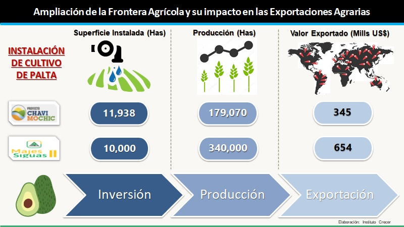 Exportacion Potencial Palta