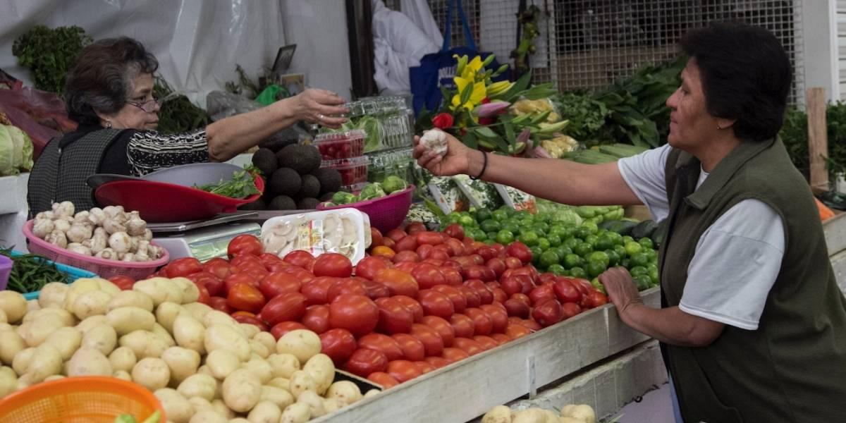 Oferta Agropecuaria y Precios de Alimentos